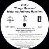 "2Pac - Thugz Mansion 12"""