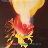 Adorable - Against Perfection LP