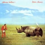 Adrian Belew - Love Rhino LP