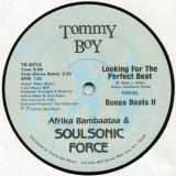 "Afrika Bambaataa - Looking For The Perfect Beat 12"""