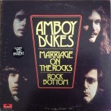 Amboy Dukes Featuring Ted Nugent - Marriage On The Rocks LP