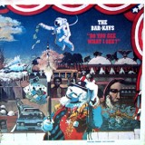 Bar-Kays - Do You See What I See LP