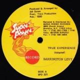 "Barrington Levy - True Experience 12"""
