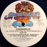 "Bassadelic - One Nation Under A Boom 12"""