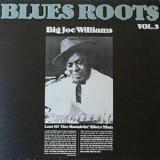 Big Joe Williams - Last Of The Ramblin Blues Man LP