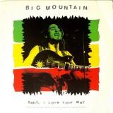 "Big Mountain - Baby I Love Your Way 12"""