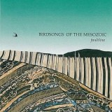 Birdsongs Of The Mesozoic - Faultline LP