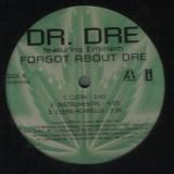 "Dr. Dre - Forgot About Dre 12"""