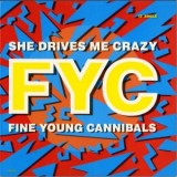 Fine Young Cannibals - She Drives Me Crazy 12""