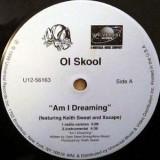 "Ol Skool - Am I Dreaming 12"""