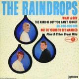 The Raindrops - The Raindrops LP