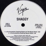 """Shaggy - In The Summertime 12"""""""