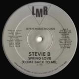 "Stevie B - Spring Love 12"""