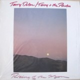 Terry & The Pirates - Rising Of The Moon (colorido) LP