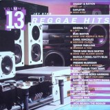 V/A - Reggae Hits Vol. 13 LP