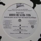 """Wayne Smith - Under Mi Sleng Teng 12"""""""